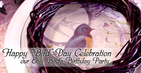 Facebookpreview BirdDay