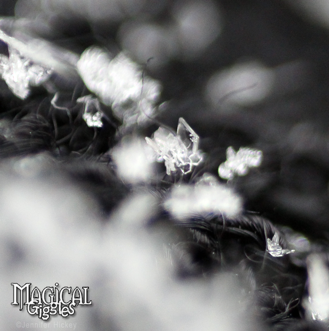 Macro(extreme close-up) photography of snow.
