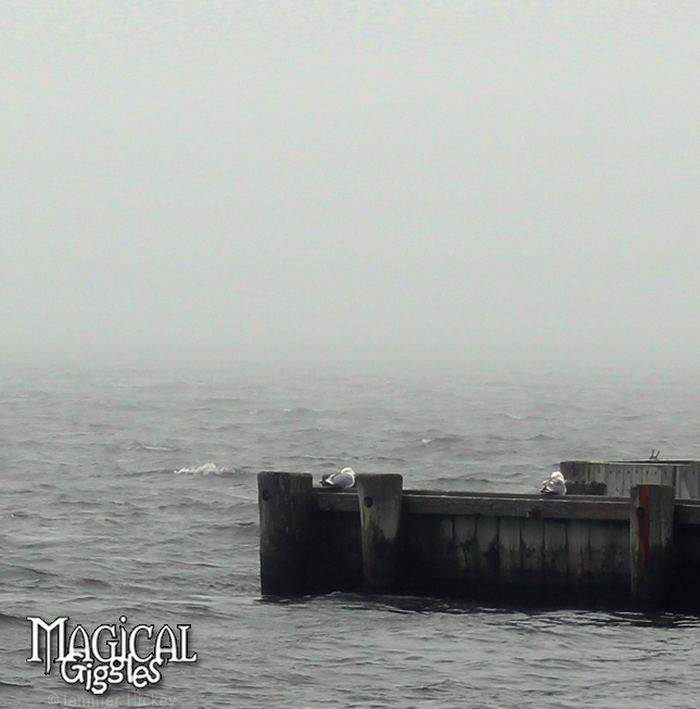 Sittin' on the dock of the bay...The Great South Bay in West Sayville as a fog rolled in for just a little while and then rolled back out again.