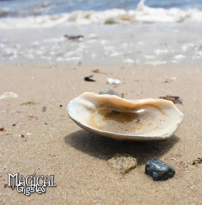Sea Treasures.