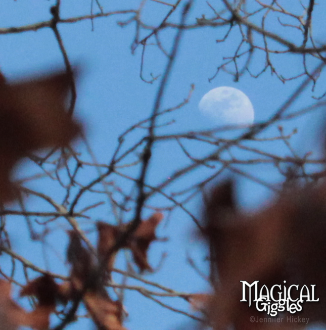 Day Moon.